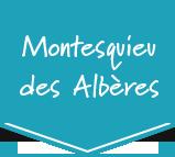 Montesquieu des Albères